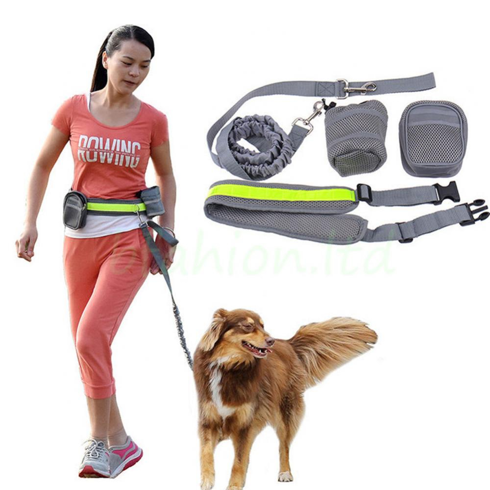 Hands Free Dog Leash Running