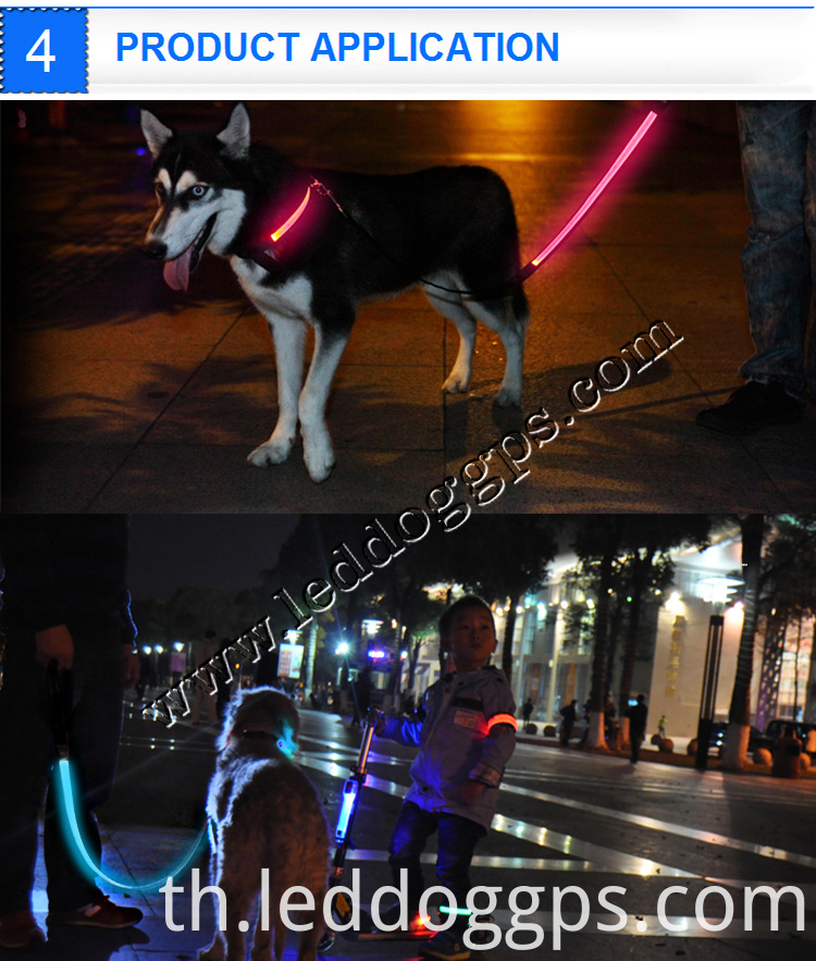 Usb Rechargeable Dog Leash