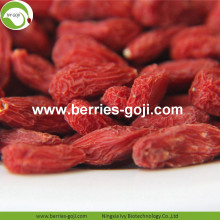 Beli Natural Nutrition Dry Fruit Lycium Barbarum