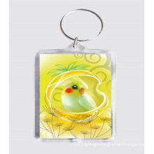 Custom Key Ring, Acrylic Key Chain (GZHY-KC-009)