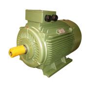 CE Ie2 Y2 Three Phase Electric Motor (Y2-280M-6)