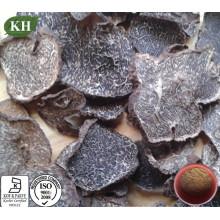 Extrait de truffe noire à croissance sauvage pour améliorer l'immunité