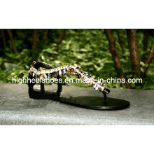 New Design Fashonal Flat Sandals (Hcy02-778)