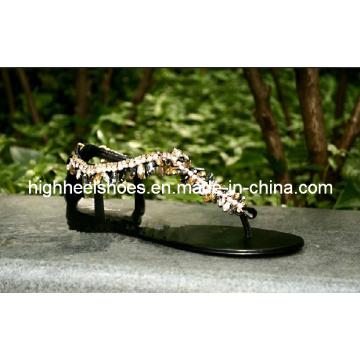 New Design Fashonal Flat Sandals (Hcy02-778)