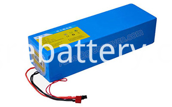 48V 1000W Electric Bike Battery (1)