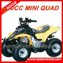 FOUR STROKE ATV QUAD BIKE (MC-302)