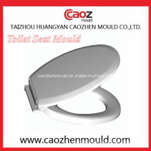 Plastic Injection Toilet Seat/Cover Mould