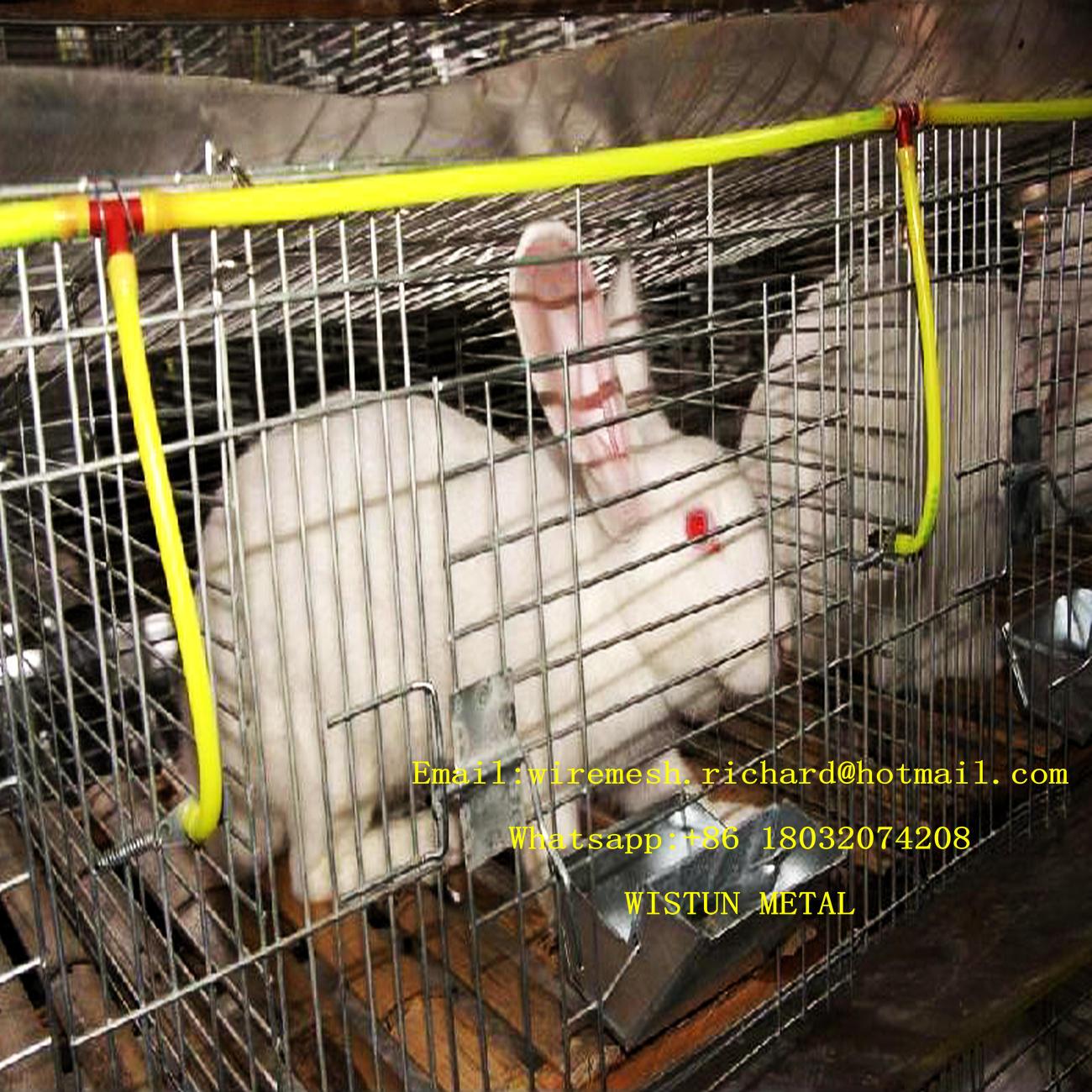 Großartig Kaninchen Käfig Drahtgeflecht Bilder - Schaltplan Serie ...