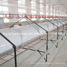 High Quality Poultry House Automatic Breeder Laying Nest