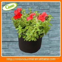 Plantador de concreto decorativo novo e quente (RMB)