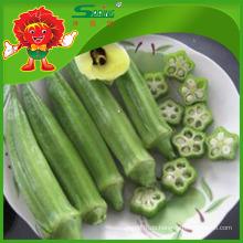 New Crop Frozen Organic Okra zum Verkauf