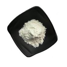 Factory Supply High Quality Lactobacillus Rhamnosus Powder