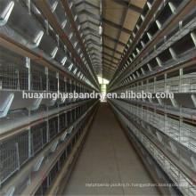 Système de cage de poulet à griller / cage de poulet / poulailler