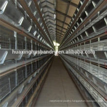 Large scale factory chicken house design for chicken cage