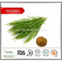 Horsetail Extract Powder, 8% Silica, Equisetum Arvense, For bones, hairs, nails