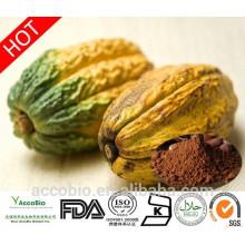 Gewichtsverlust Ergänzung Kakao Extrakt Theobromin 10% 20%