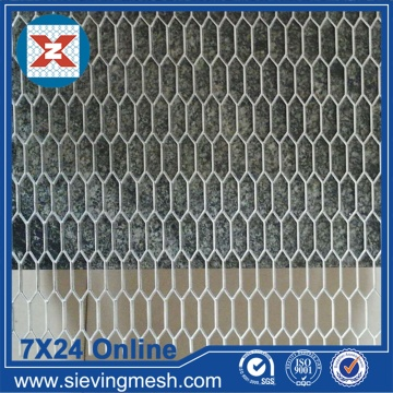 Mesh Plate Stainless Steel