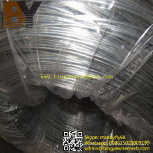 Hot-Dipped Galvanized Flate Wire for Vineyard