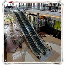 Wholesale Elevator Manufacturer Price Escalator