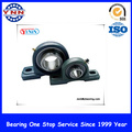 Bester Preis und Stable Performance Pillow Block Bearings (UCP 202)