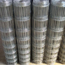 Gold Supplier Galvanized Grassland Fence (TYH-030)