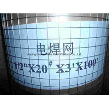 Welded Wire Mesh for Cage/Filter