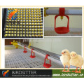 automatic chicken house nipple drinking line with pp plastic cup