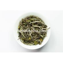 2016 Melhor Marcas Brancas Branco Preço do chá