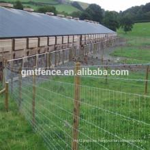 Venta caliente de alta calidad galvanizado cerca del campo / cerca de ganado