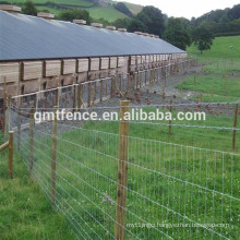 Hot Sale High Quality Galvanized Field Fence/Cattle Fence