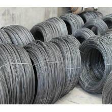 Verzinkter Stahldraht / Stahldraht für Nagelherstellung