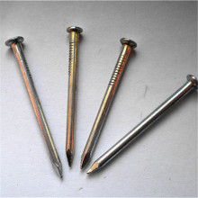 Professional Common Nail China Supplier