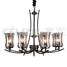 Big Quantity Promotion Pendant Lamp with Glass Shade (SL2246-8)