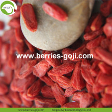 Atacado Super Food Dried Sweet Goji Berry