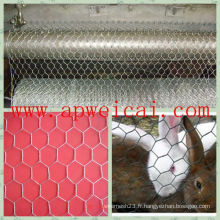 Fil de volaille 1/2 Hex Mesh Chicken Wire Home Depot