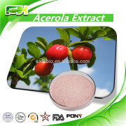 Factory Sales 100% Natural Cherry Extract Acerola Extract