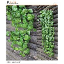 High quality Climbing plants /IVY for wall decoration