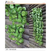 Высокое качество вьющиеся растения /плющ для украшения стены