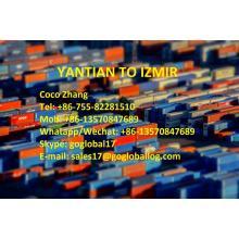 Shenzhen Yantian Sea Freight to Turkey Izmir