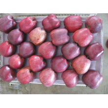 Sweet apple fresh huniu apple in low price