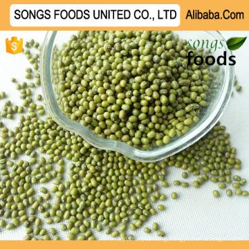 Food Market Green Mung Beans New Crop