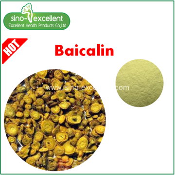 Natural Baical Skullcap Extract Baicalin