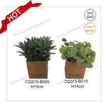 H15cm Type de fleurs et matière plastique Plant Fleur de soie artificielle