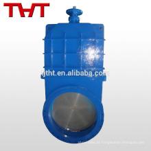 Através de uma válvula de retenção de ferro, não subindo, de aço inoxidável