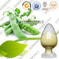 Natural Creamy Pea Protein Wholesale Factory Supply