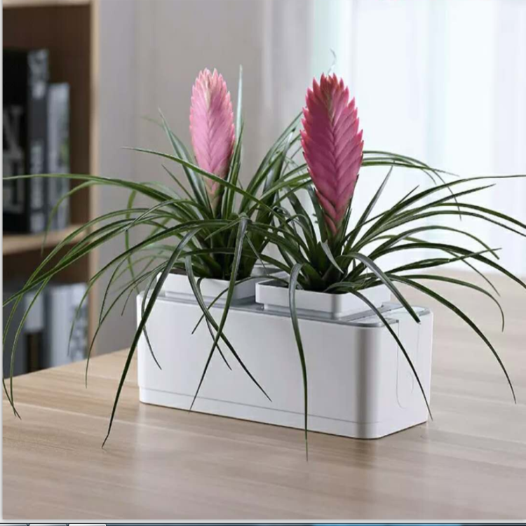 Hydroponic Growing Systems Indoor Plant Growing Rubber Flower Pot