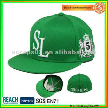 cap flex fit SN-0089