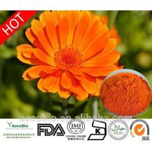 Fornecimento de fábrica 100% Natural Calêndula Flor Extrato Em Pó Zeaxantina 5% -40%