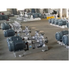 Anti Corrosion Hot Oil Pump