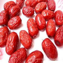 Fornecer melhor qualidade jujuba orgânica / datas vermelhas chinesas